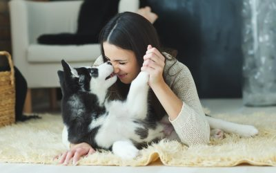 Helping your puppy settle into their new home