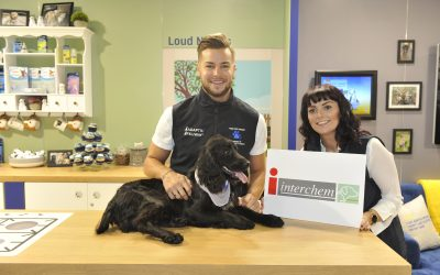 Chris Hughes supports Pet Anxiety Awareness Campaign at Crufts