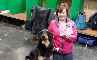 Penny used Adaptil to stay relaxed when travelling to Crufts